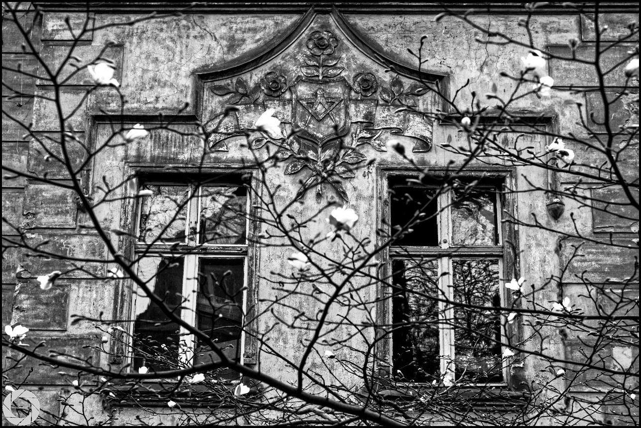zlapanewkadr.pl_pogodno_27.jpg